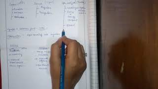 Connective Tissue,its types,Loose connective Tissue,Part-1(in Hindi)