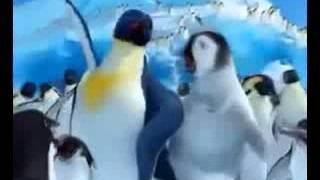 REGGADA] Les Pingouins aussi dansent El Alaoui, geniaaalll !!!   YouTube