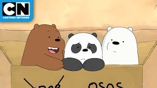 We Bare Bears | Baby Bears in Mexico | Cartoon Network