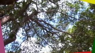 Parque Cidade da criança em Manaus