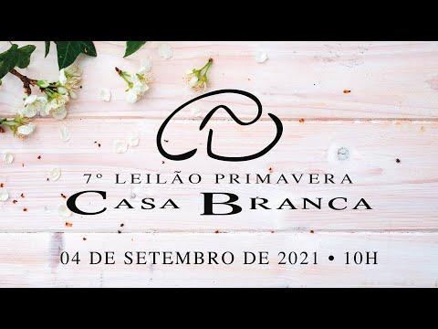 Lote 214 (CABR Santo 2943 3 - CABR 2943)