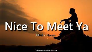 Nice To Meet Ya | Niall Horan Lirik Dan Terjemah Bahasa Indonesia