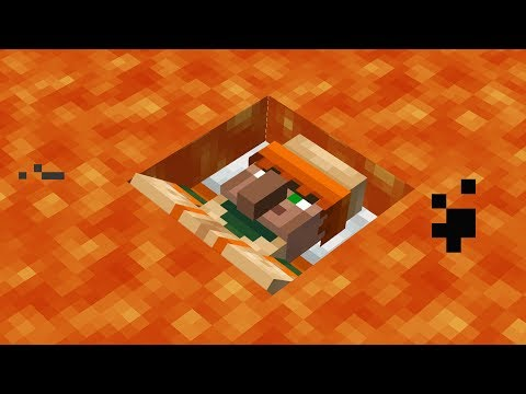 Это ошибка Minecraft