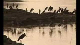 Le tourisme au Tchad