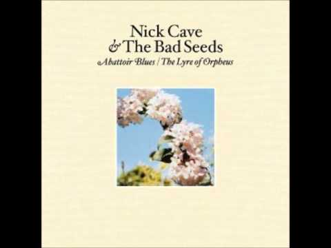 Nick Cave - carry me