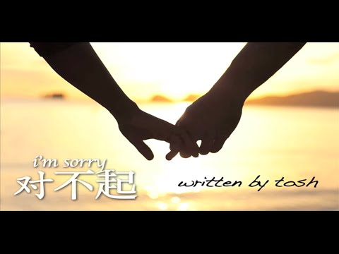 Tosh Zhang feat. Wang Weiliang - 对不起 I'm Sorry (Lyric Video)