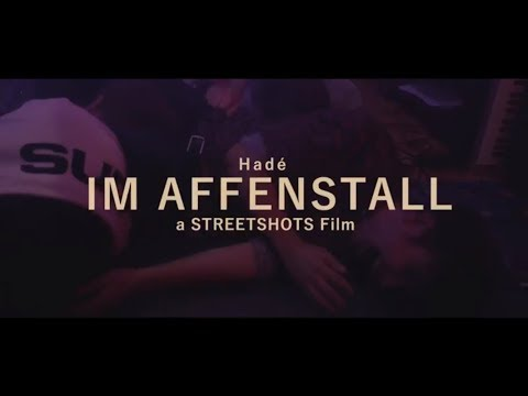 Hadé - Im Affenstall