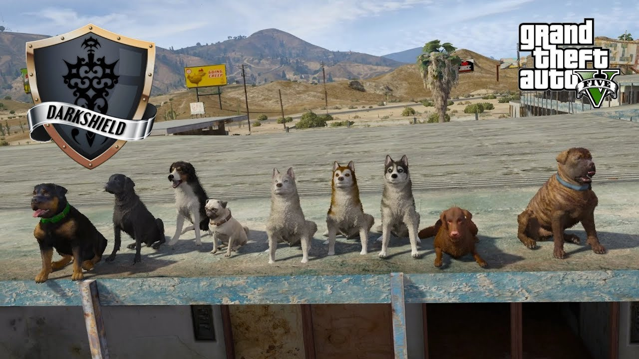 Gta  Roleplay Darkshield  Who Let The Dogs Out