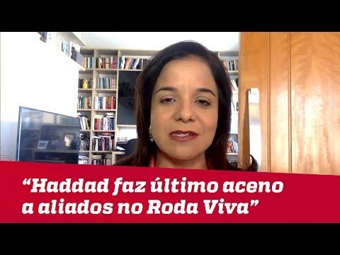 Haddad faz último aceno a aliados durante Roda Viva | Vera Magalhães