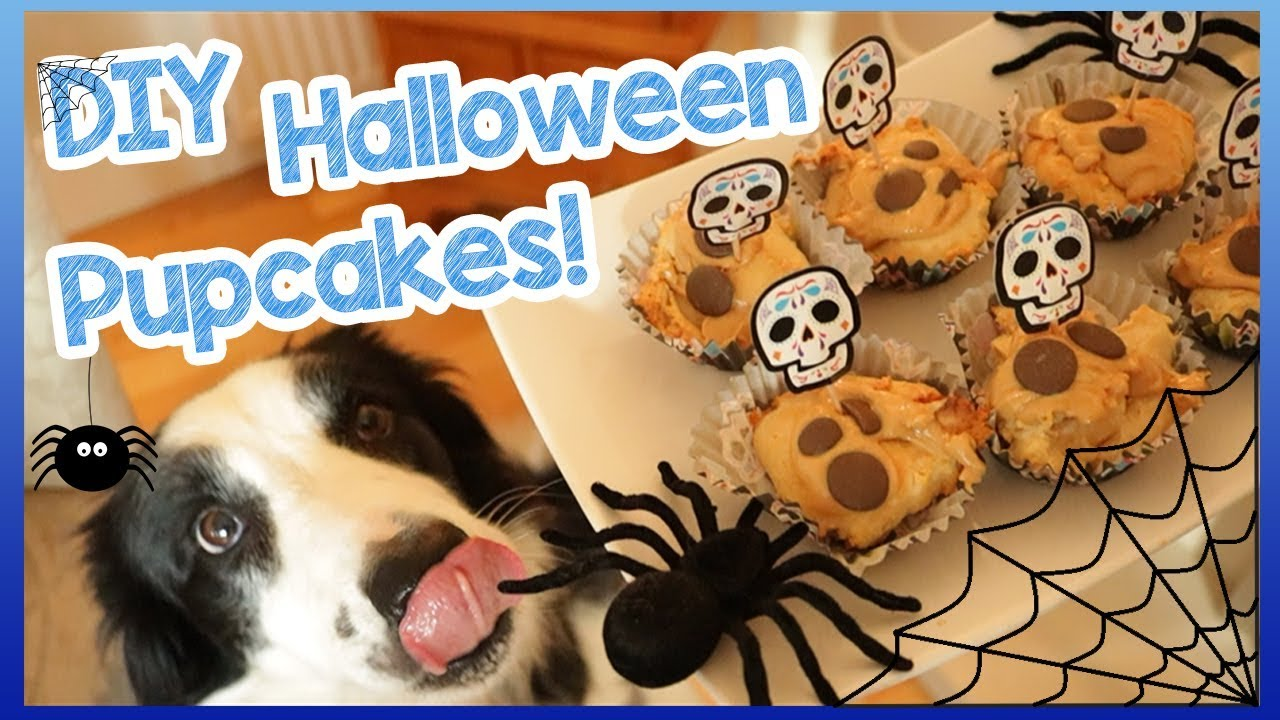 DIY Halloween Pupcakes! | How to Make Easy Cupcakes for Dogs - Spooky  Halloween Dog Treats! 👻 🎃 🐶