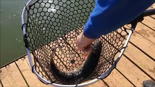 Ловля Форели!!! Приманки для ловли Форели!!! Рыбалка в Подмосковье!!!14.04.18