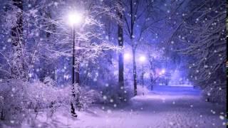 Зима  Снег  Сумерки  Фонарь   Футажи для видеомонтажа бесплатно в Full HD1080p качестве