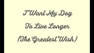 I Want My Dog To Live Longer The Greatest Wish Dog Audio 4