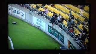 Greatest Ever Crowd Catch - Cricket - 1 Handed on 1 Foot
