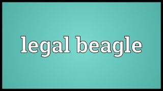 Legal Beagle Meaning