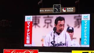 ヤクルトスワローズ神宮最終戦セレモニーです。 小川監督と中村選手会長...