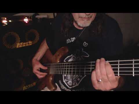 Whiskey Lullaby...   Brad Paisley ...  Bass cover