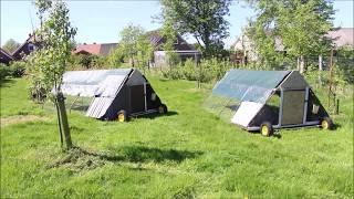 Мой сад огород в Германии - Нижняя Саксония - Добровольная жизнь в деревне)