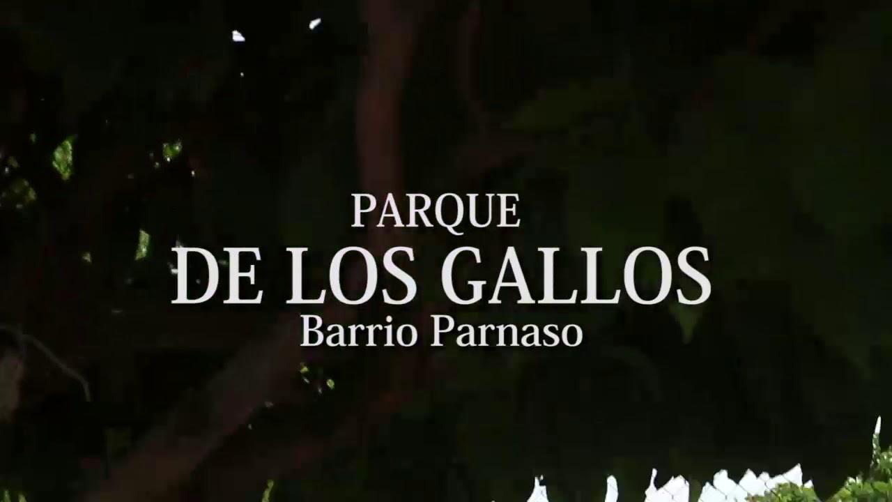 BINGO BAZAR EN EL PARQUE DE LOS GALLOS, EN EL BARRIO EL PARNASO