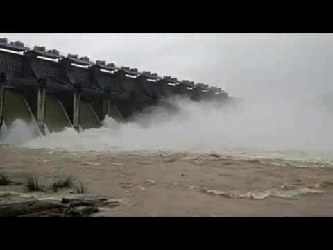 Chandil Dam gates open after heavy rain