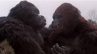 Кинг Конг жив (Фильм 1986) - 13 часть (из 35)