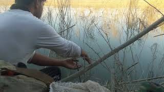 اجمل صيد في سناره