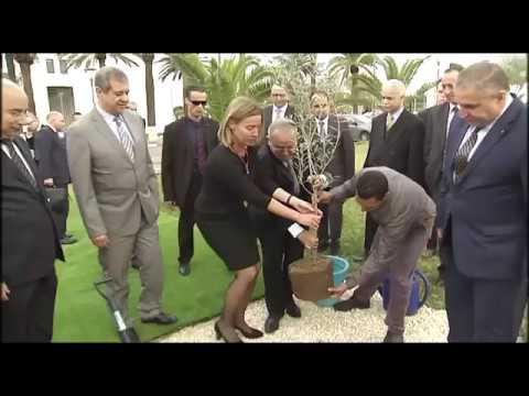 09 avril 2017 - Plantation cérémonielle d\'un olivier DE LA HRVP ...