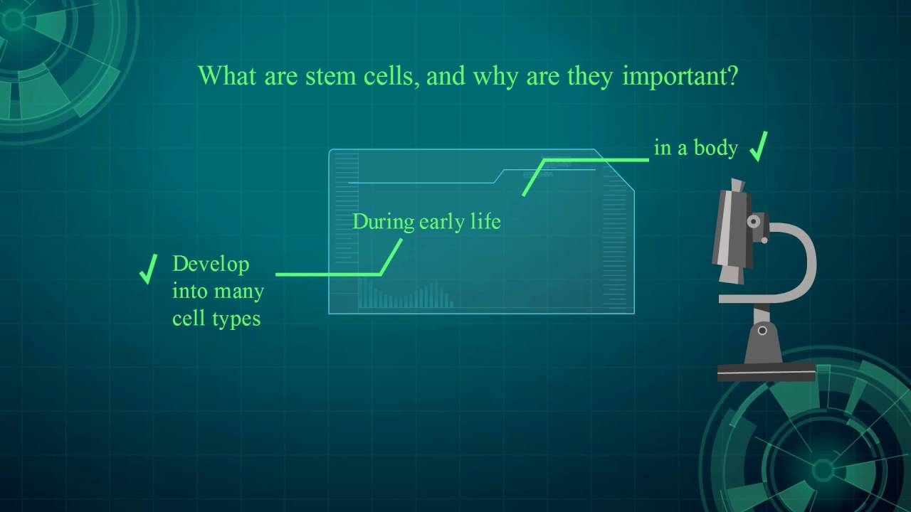Genisis Medical Center - What are Stem Cells and Why are they ...