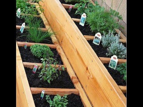 выращивание пажитника