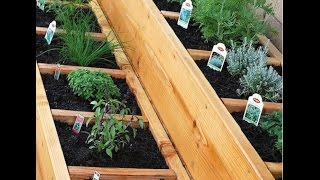 Многолетние пряные травы на даче: выращивание на грядках своими руками, какие можно посадить, фото и видео