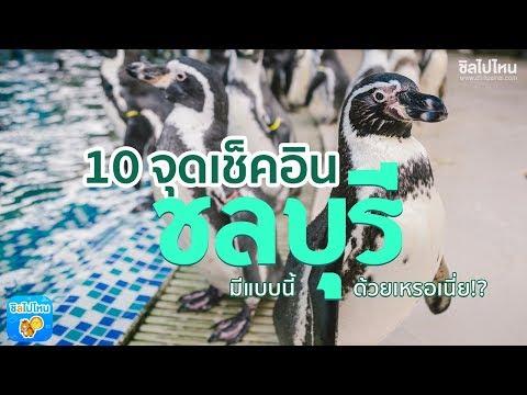 10 จุด Check-In ชลบุรี ศรีราชา สัตหีบ ที่เที่ยวเด็ดขนาดนี้ต้องไปแล้ว!