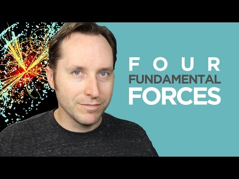 The Four Fundamental Forces - And Maybe a Fifth? | Answers With Joe