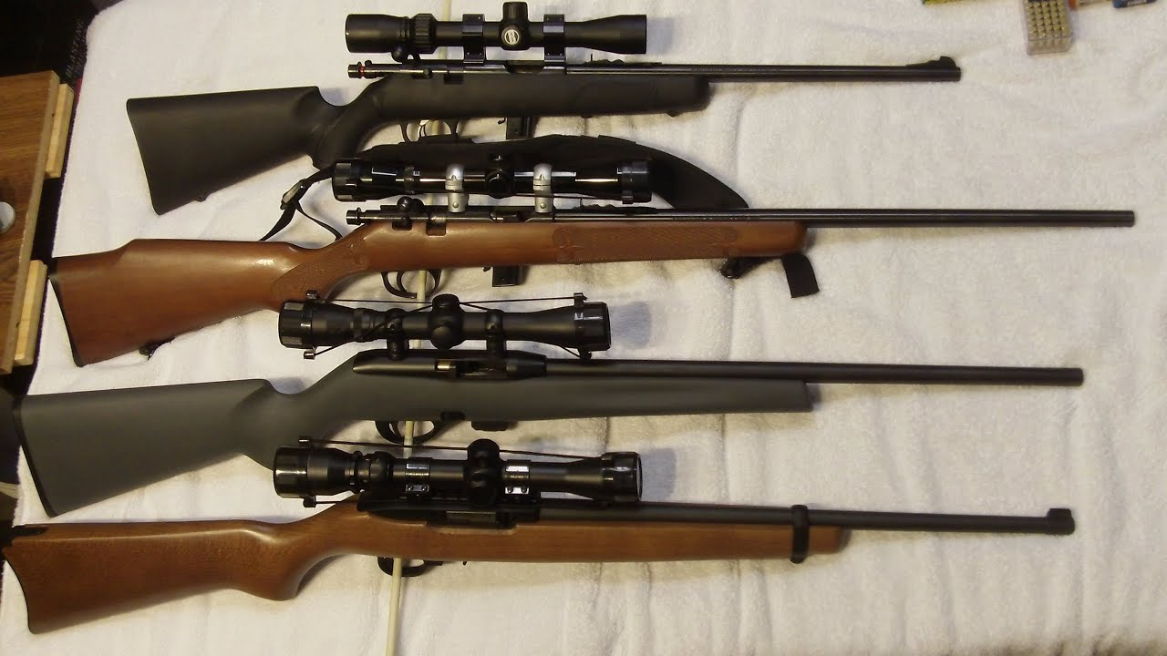 Picking your 1st 22 Rifle