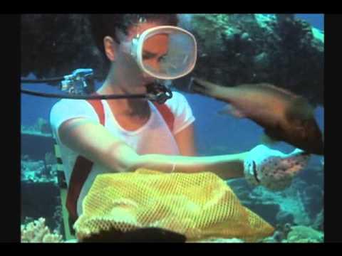 The Deep   Jacqueline Bisset Nick Nolte 1977