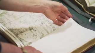 Diana Newall: Art Historian thumbnail