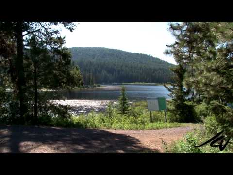 Dear Prime Minister Stephen Harper -  Canada environment is not your's to destroy -  YouTube
