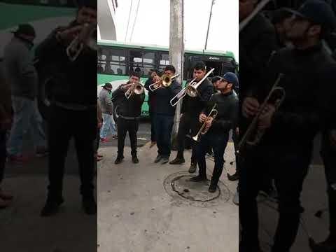 Banda Tierra Elegida Ft Única De Guerrero  En San Andrés Totoltepec 2019 - Mañanitas Y En Tu Día