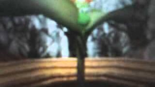 Super Mario 64 -by mina- ITA parte 4...Finalmente un paio di baffi!!!