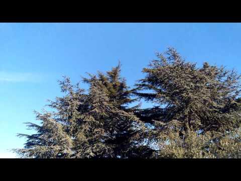 Nubia Z11 Mini S - prova video in 4K