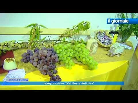 """IL GIORNALE Inaugurazione """"XVI Festa dell'Uva"""" - Licodia Eubea 2 Settembre 2017"""