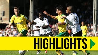 HIGHLIGHTS: Fulham 1-1 Norwich City