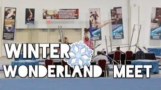 Xcel Platinum Gymnastics Meet: Winter Wonderland 2015