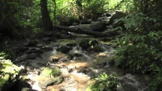 Olumirin Water Falls, Erin-Ijesha, Osun State
