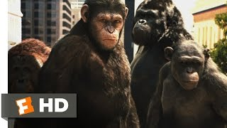 Rise of the Planet of the Apes (2011) - Attack on San Francisco Scene (3/5) | Movieclips