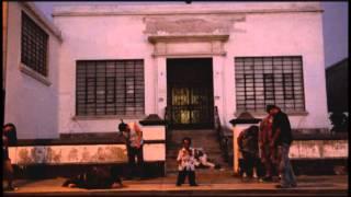 El Año del Apocalipsis (Harlem shake)