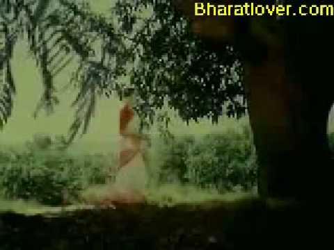 Download Naram Garam1981 10