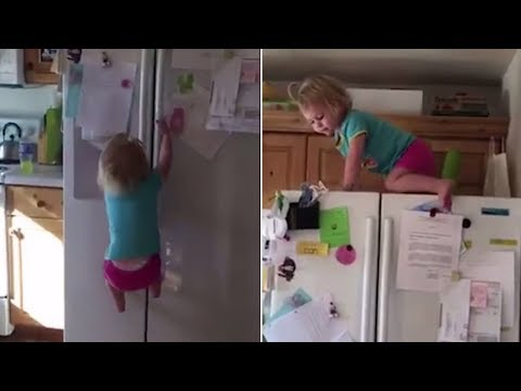 Daredevil 2-Year-Old Scales Refrigerator by Herself