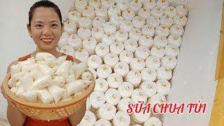 Cách làm sữa chua túi mình bán hàng ngày