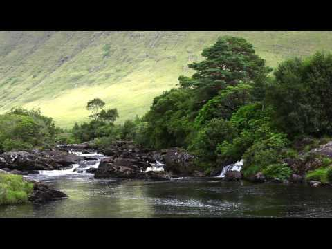 Nature Sounds with Classical Piano Music by Frederic Chopin & Calming Sound of Water with Birdsong