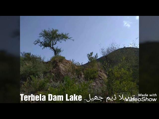 Haripur Terbela Dam Lake Tourist point